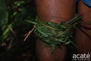 aplicação-de-medicina-tradicional-dos-matsés