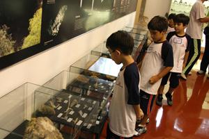 museugeociencias0175