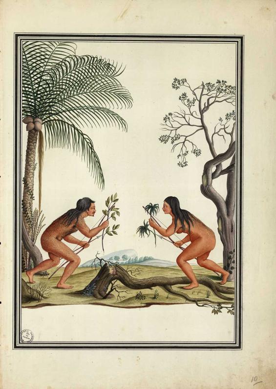 carlos julião índios